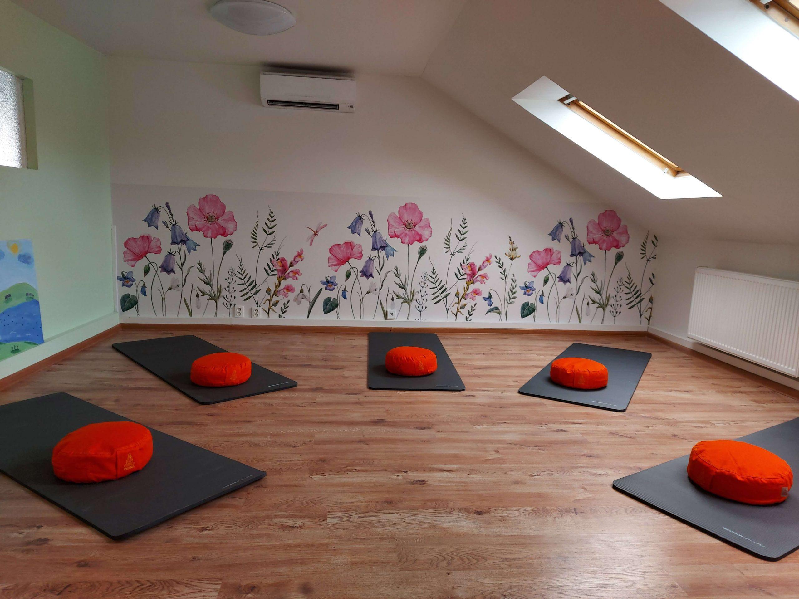 Akadémia pozitívneho života koučovacia miestnosť les 5 menšia